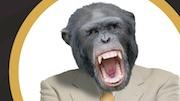 mini movie monkey